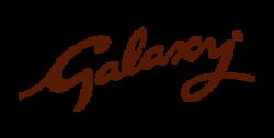 mf_logos_galaxy