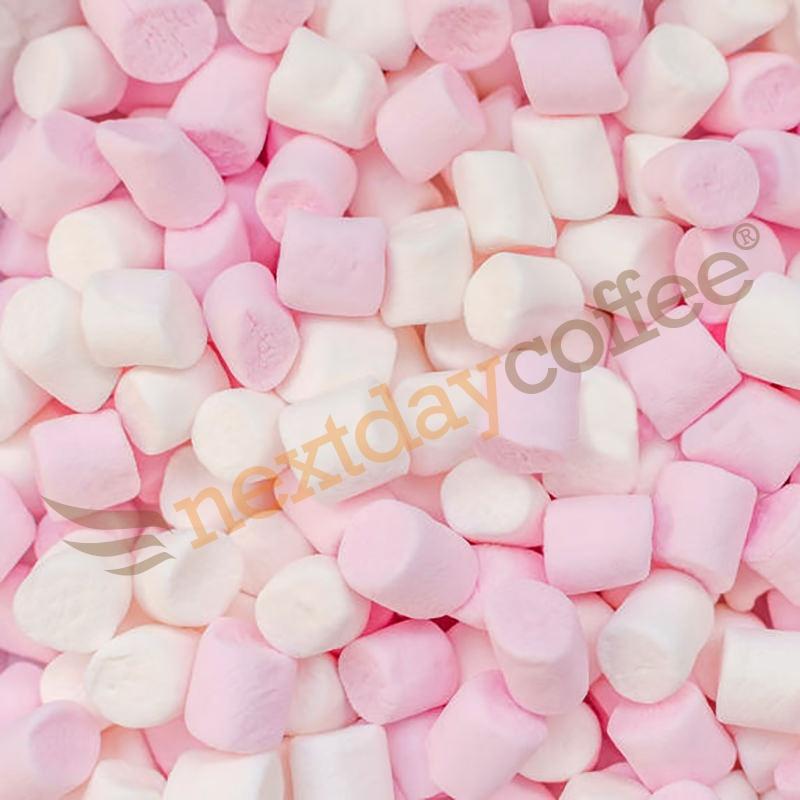 Mini Marshmallow Toppings (1kg)