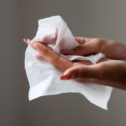 Sanisafe Antibacterial Wipes (100)
