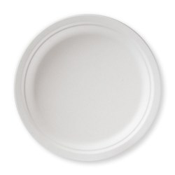 Biodegradable Disposable Plate 9